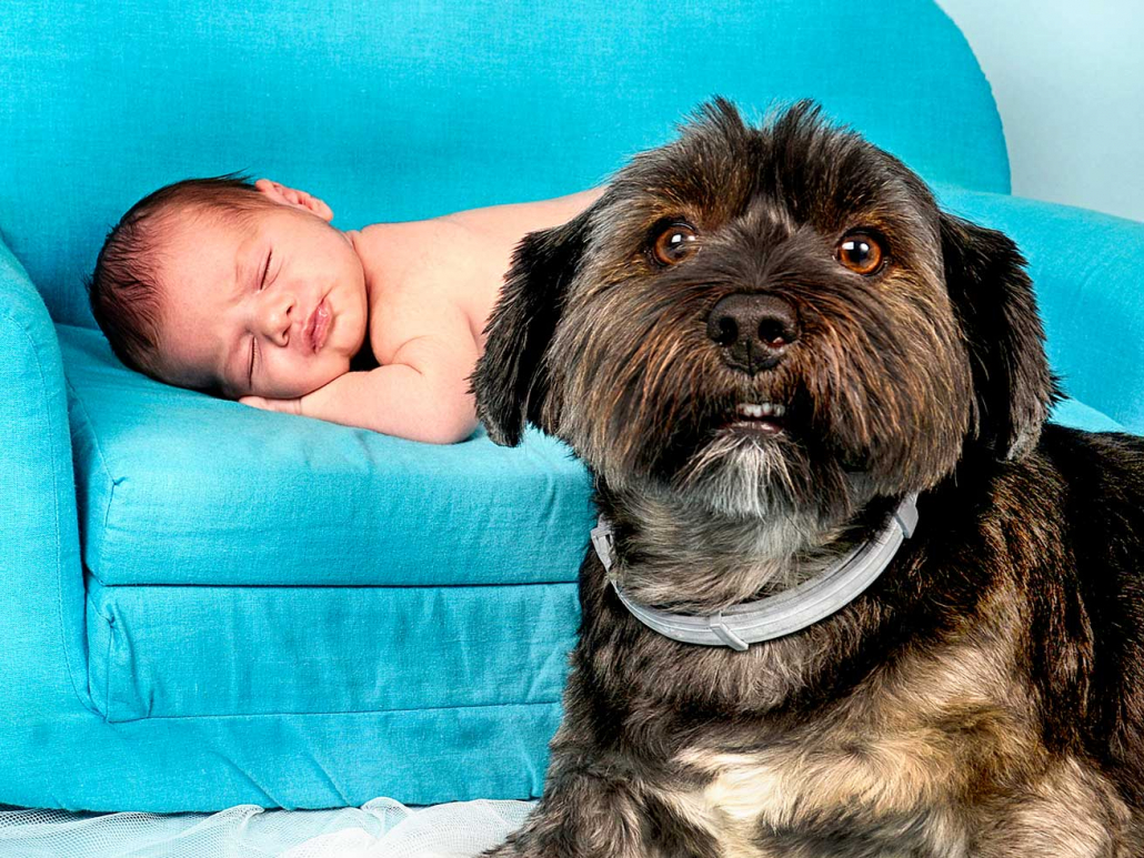 fotografos newborn